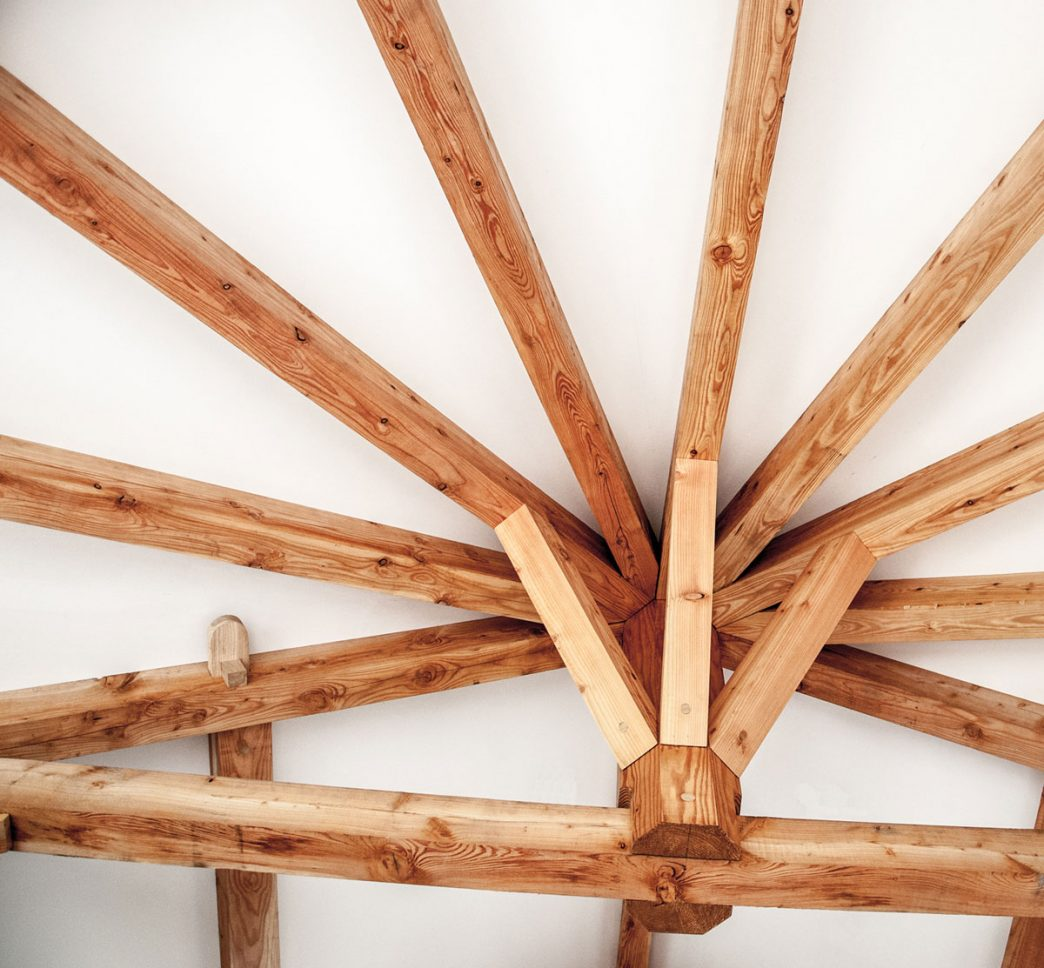 interior rafters of a curved roof part of a timber frame extention to a house